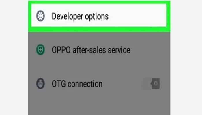 Haz clic en las opciones de desarrollo